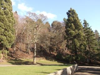 Balgay Hill