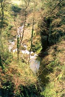 Gorge on the River Devon