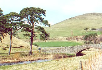 Bridge over the Lyne Water