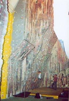 The Alien Rock