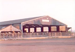 Caledonian Marts Cattle Market, Stirling