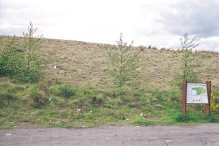 Roughcastle Community Woodland