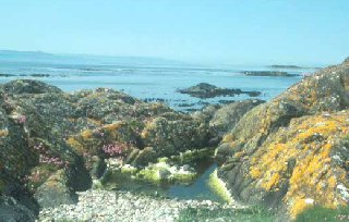 The coast of the island of Gigha