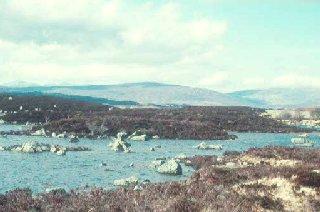 Glacial lochan on Rannoch Moor