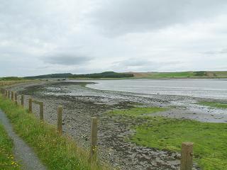 Ythan Estuary