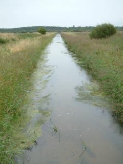 Spynie Canal