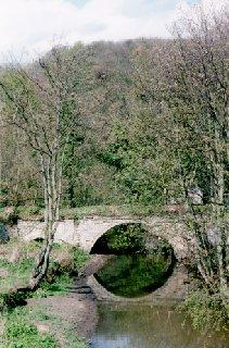 Valleyfield Wood