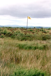 Flag marking government line at Culloden Moor