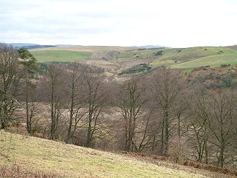 Valley of the Tyne Water at Crichton