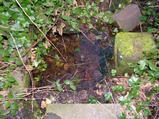 St Baldred's Well, Preston