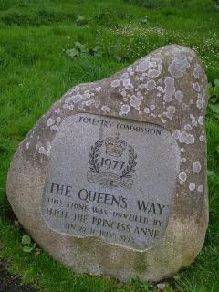 The Queen's Way