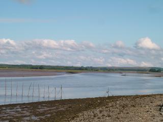 Cree Estuary