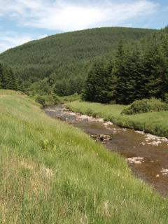 Tima Water and Deephope Hill